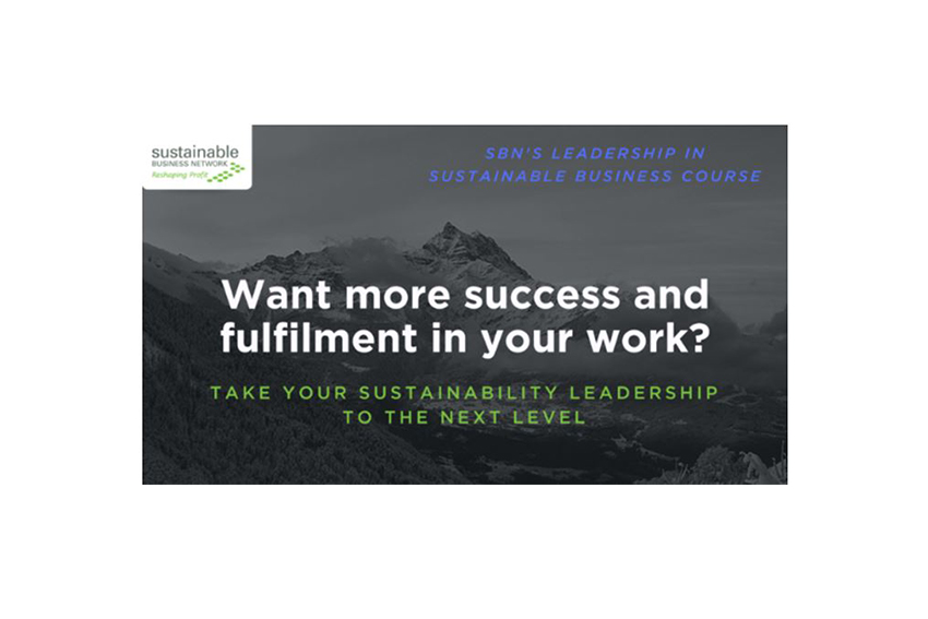 Leadership in Sustainable Business Course 2018