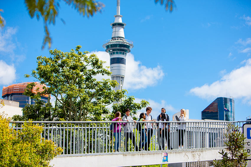 Life in Auckland